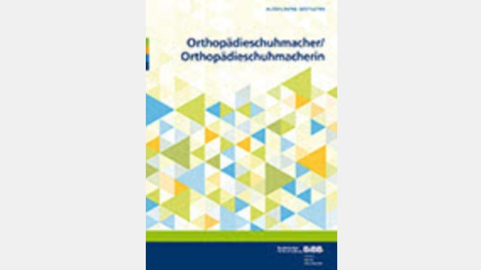 Umsetzungshilfen Orthopädieschuhtechnik
